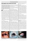 Fukosidos hos engelsk springer spaniel Gener, etik ... - Doggy Rapport - Page 6