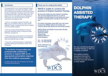 dolphin assisted therapy - Whale and Dolphin Conservation Society