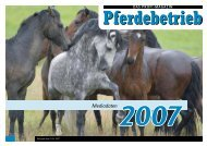 Mediadaten 2007
