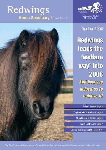 Spring Newsletter 2008 - Redwings