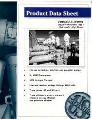 Vertical A.C. Motors - Torrent Engineering & Equipment
