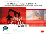 3M CPPD (Corrosion Coatings) + NASPD (Steel Pipe )