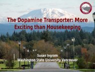 The Dopamine Transporter: More Exciting than Housekeeping