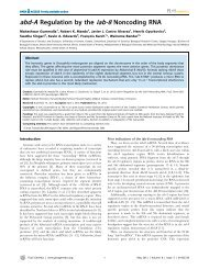 abd-A Regulation by the iab-8 Noncoding RNA - University of ...