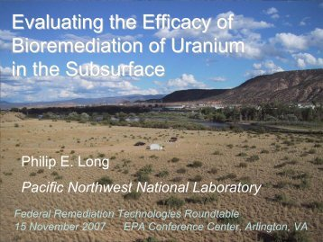 Evaluating the Efficacy of Bioremediation of Uranium in the Subsurface