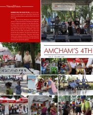 AmChAm'S 4th JUly PICNIC