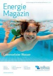 02/2012 zum Download (PDF) - wbm