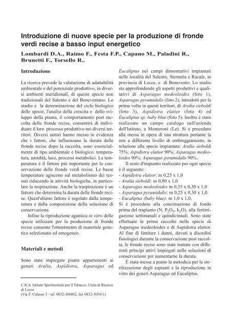 Introduzione di nuove specie per la produzione di fronde verdi ... - Inea