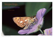 Skipperlings Love Geraniums - North American Butterfly Association