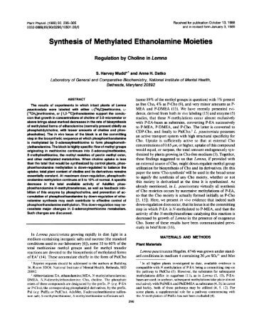 Synthesis of Methylated Ethanolamine Moieties - Plant Physiology
