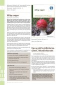 Pollen og planter til besvær - Helsedirektoratet - Page 6