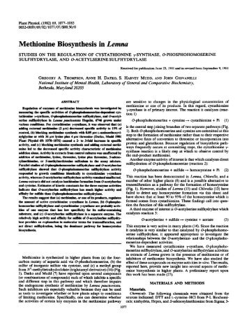 Methionine Biosynthesis in Lemna - Plant Physiology