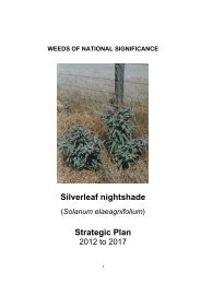 Silverleaf nightshade Strategic Plan - Weeds Australia