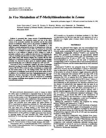 In Vivo Metabolism of 5'-Methylthioadenosine in ... - Plant Physiology