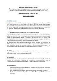 Synthèse des travaux / Recommandations - CIFAL Ouagadougou