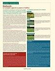 Fil Des Saisons #31 Printemps 2010 - Comptoir Agricole - Page 4