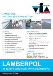 LAMBERPOL Argumente.p65 - via-Dachteile