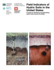 Field Indicators of Hydric Soils in the United States, Version 6.0 (2006
