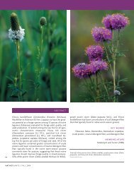 Evaluation of Native Legume Species for Forage Yield, Quality, and ...