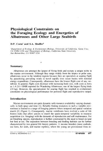 Physiological Constraints on the Foraging Ecology and Energetics ...