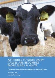 Progress Report - Beyond Calf Exports Stakeholders Forum Oct 09
