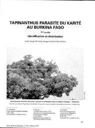 tapinanthus parasite du karite au burkina faso - Bois et forêts des ...