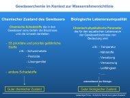 Überwachungsprogramm an Ill und Theel (PDF ... - Lebendige Prims