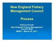 New England Fishery Management Council Process