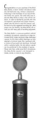 Manual for Blue Baby Bottle Microphone - Page 2