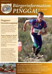 Bürgerinformation - Pinggau