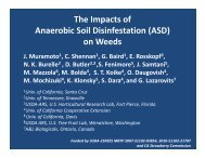Anerobic Soil Disinfestation affect on weeds, Joji Muramoto