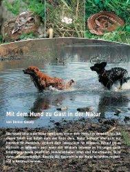 Mit dem Hund zu Gast in der Natur - Schweizer Hunde Magazin