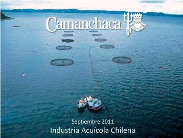 Centro de cultivo Porcelana - Camanchaca