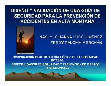 diseño y validación de una guía de seguridad para la prevención de ...