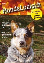 Abgabehunde und was sie wirklich brauchen - bei Hunde-logisch.de