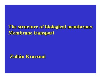 The structure of biological membranes Membrane transport Zoltán ...