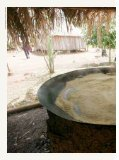 Desenvolvimento sustentável no noroeste de Mato Grosso - Page 2