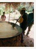 Desenvolvimento sustentável no noroeste de Mato Grosso - Page 3