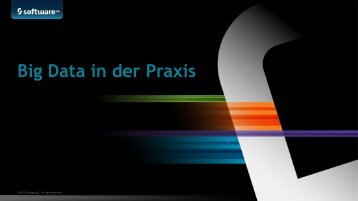 Big Data in der Praxis - Software AG