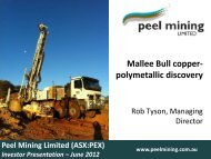 Mallee Bull copper- polymetallic discovery - Peel Exploration
