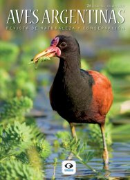 Artículo revista Aves Argentinas - Cooperativa Obrera