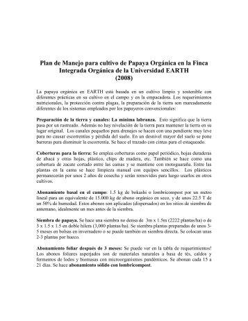 Plan de Manejo para cultivo de Papaya Orgánica en la Finca ...