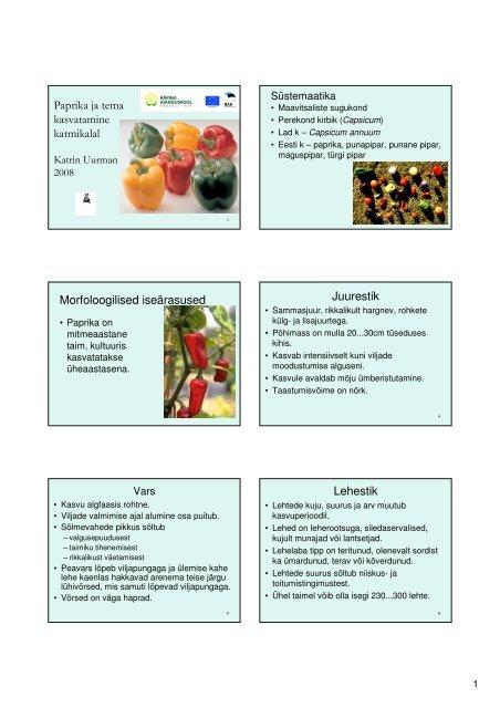 Paprika ja tema kasvatamine katmikalal Morfoloogilised ...
