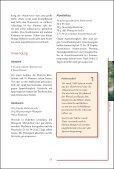 Klostermedizin Kern - Seite 4