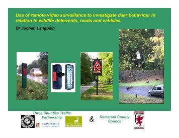 Use of remote video surveillance to investigate deer behaviour in ...