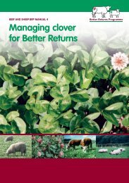 Managing Clover for Better Returns - Eblex