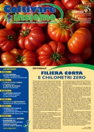 Numero 5 GIUGNO - Cooperativa Agricola di Legnaia