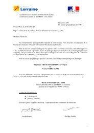 Le Directeur de l'insertion professionnelle du CRL Le ... - Inffolor