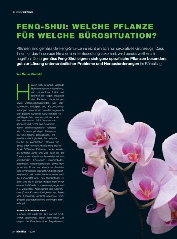 Feng-Shui: Welche Pflanze Für Welche Bürosituation? - Büroffice