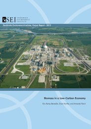 Biomass in a Low-Carbon Economy - Stockholm Environment Institute